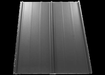 RAL 9006 Argintiu
